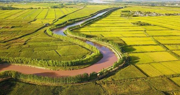 引黄灌溉水利信息化项目